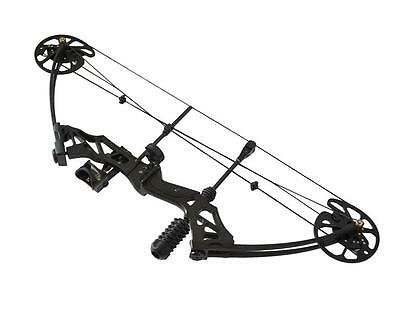 35-70lbs Archery Compound Bow Right Hand 320fps Bear Hunting Bowsight Stabilizer