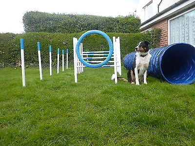 dog agility jump,hurdle tunnel weave & tyre jump set,equipment training & fun.
