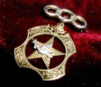 LOVELY CLASSIC Golden PEACE DOVE Rebekah ODD FELLOWS JEWEL Vintage! MAGICAL NICE