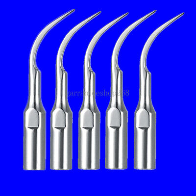 5 Pcs Dental Scaling tip PD1 Periodontics fit SATELEC/DTE Scaler