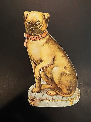 Levine Cleaner Dog Victorian Trade Card