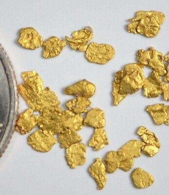 Alaskan Yukon BC  Gold Nuggets  12-10 Mesh 1 Gram of Fines