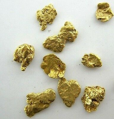 Alaskan Yukon Gold Rush Nuggets #8 Mesh 2 Grams of Fines
