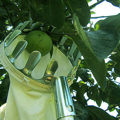 Metal Fruit Picker Picking Apple Pear Orange Tree Gardening Grab Basket RI