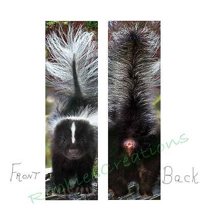 SKUNK BOOKMARK City Country Wildlife Spray Animal PET ART Book Card Figurine