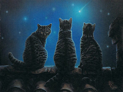 NEW Wish Upon A Star Cat Picture by Lisa Parker 25 cm x 19 cm Wall Plaque