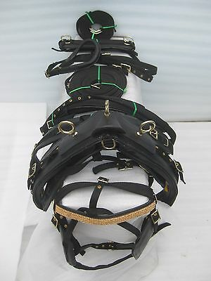 "Exclusive ""NYLON DRIVING HARNESS FOR SINGLE HORSE IN BLACK"" with designer bridle"