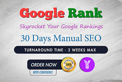 Skyrocket your ranking to Google top pages with 30 days SEO
