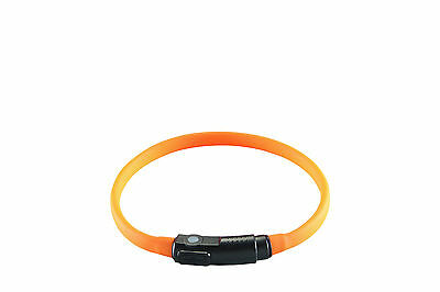 Hunter LED Silicone Tube de lumière Yukon avec USB Collier Chat orange