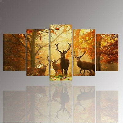 5PC HD Canvas Print Home Decor Wall Art Painting Picture Large Deer Unframed