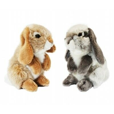 Small Sitting Lop Eared Rabbit Soft Toy - Living Nature Novelty Cuddly Stocking