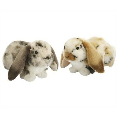 Dutch Lop Eared Rabbit Soft Toy Assorted Designs - Living Nature F Novelty