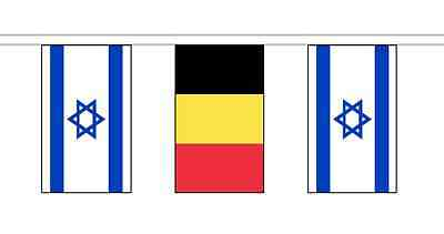 Israel Friendship 14 Flag 5m Knitted Polyester Diplomatic Bunting
