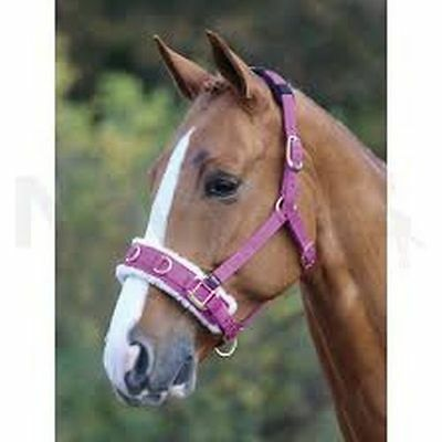 Shires Fleece Lined Nylon Lunge Cavesson Pink Pony Size