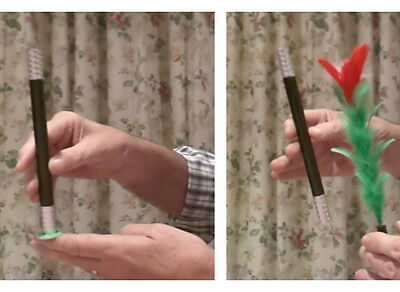 Easy Magic Tricks for Kids - MAGIC WAND TURNS INTO A FLOWER  (Watch Video)