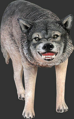Wolf Statue - Life Size Wolf Statue - Growling Wolf Statue - Large Wolf Figurine