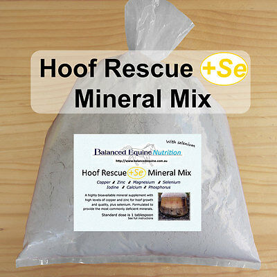 Hoof Rescue Mineral Mix +Se -Carol Layton-Essential Minerals for Hoof Repair