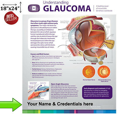 """Understanding Glaucoma Poster for Patient Education """"Must See"""" Wall Chart"""