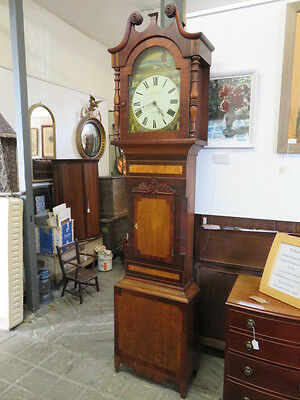 SUPERB 19th C LONGCASE 30HR CLOCK MY ANDREW MORLEY - CROPTON - YORKSHIRE
