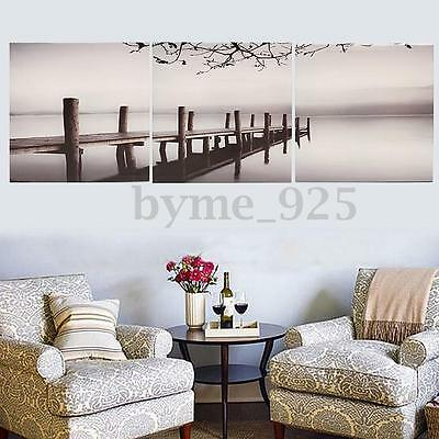 3Pcs Print Canvas Art Picture Black White Bridge Lake Landscape Poster + Framed