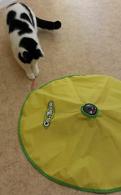 UK TV cats meow moving mouse under fabric cover electronic fun cat kitten toy
