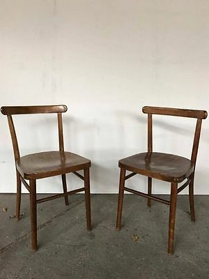 Vintage, Mid Century Chairs by Fameg