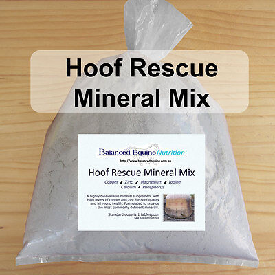 Hoof Rescue Mineral Mix - Carol Layton-Essential Minerals for Hoof Repair