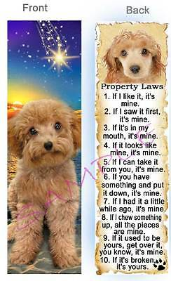 Apricot Miniature Toy POODLE Dog Property LAW Dog RULES Book BOOKMARK-Cockapoo