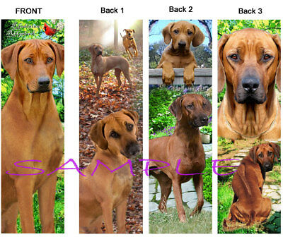 3 RHODESIAN RIDGEBACK BOOKMARKS DOG book card nice gift