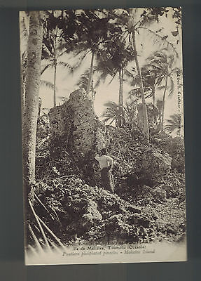 Mint Tahiti French Polynesia BW RPPC Postcard Makaltea Island Jungle View