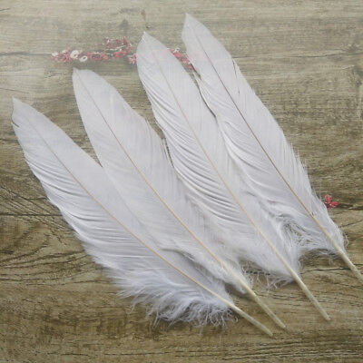 Rare 10-200pcs 14-16 inches /35-40 cm White pheasant feather Holiday Decoration