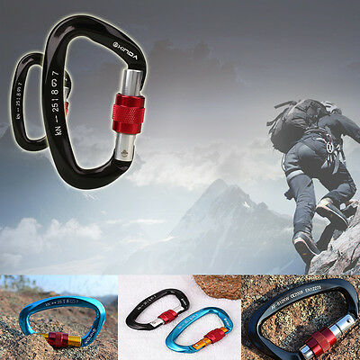 Professional Safety Master Lock D Shape Buckle Mountain Climbing Lock Carabiners
