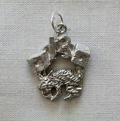 NEW Charms of Luck Amulet Pendant