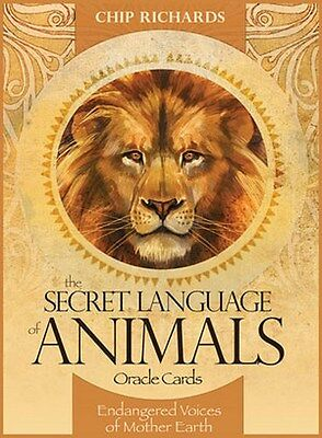 NEW The Secret Language of Animals Oracle Cards Deck Chip Richards Jimmy Manton