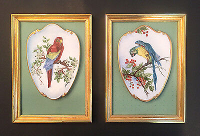 2 Handpainted Parrot Macaw Birds Porcelain Framed Wall Pictures/Plates Pair Gold