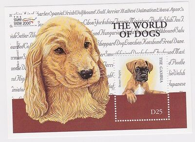 Gambia - Dogs, 2000 - Sc 2285 S/S MNH