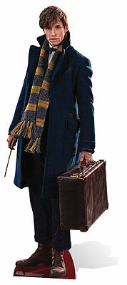 Newt Scamander Fantastic Beasts and Where to Find Them Cardboard Cutout Redmayne
