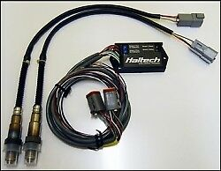 Haltech Dual Channel Wideband 12'/4m O2 Extension Harness