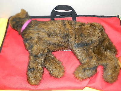 Rescue Critters Fluffy Cat Feline Cpr Veterinary Training Manikin (12 Available)