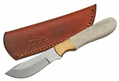 FIXED-BLADE HUNTING KNIFE Full Tang Potbelly Skinner Blade Bone Handle + Sheath