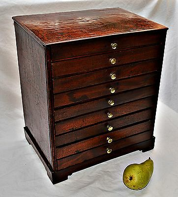 19th Century Quilted Mahogany, Miniature Nine Drawer Collectors Cabinet