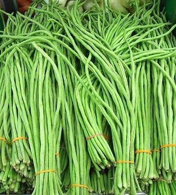 Fresh Thai String Beans- 200g