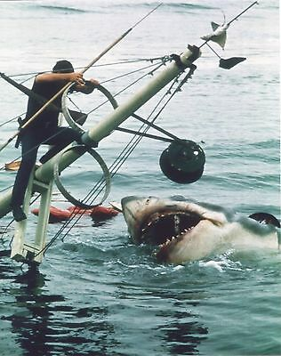 Jaws Boat Sinking Movie Star Celebrity Color 8x10 Photo