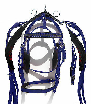 Nylon Driving Harness For Single Horse Black/royal Blue Color In Cob Sizes