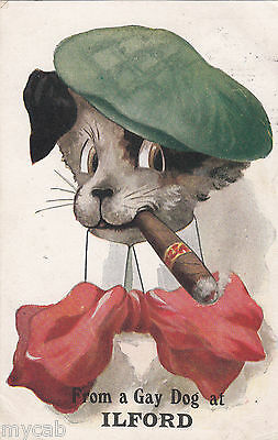 Postcard Ilford Essex from a cigar smoking Gay Dog posted 1912 by Wildt and Kray