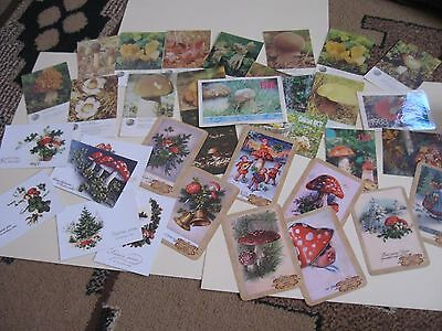 lot of 34 vintage mushroom pocket calendars different years & countries