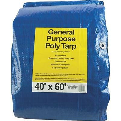 40 x 60-feet Do it Best BLUE General Purpose Poly Tarp