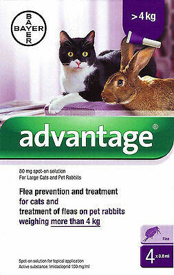 Advantage 80mg Spot-On Flea Solution for Large Cats and Rabbits over 4kg..