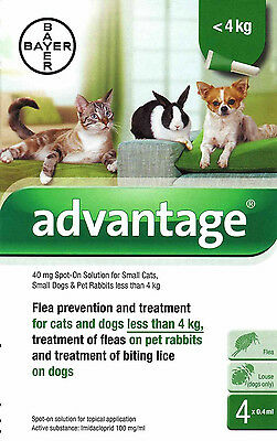 .Advantage 40mg Spot-On Flea Solution for Small Cats Dogs and Rabbits under 4kg.