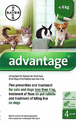 Advantage 40mg Spot-On Flea Solution for Small Cats Dogs & Rabbits under 4kg.